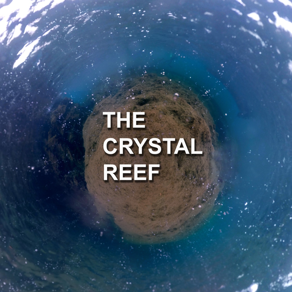 the_crystal_reef_promo